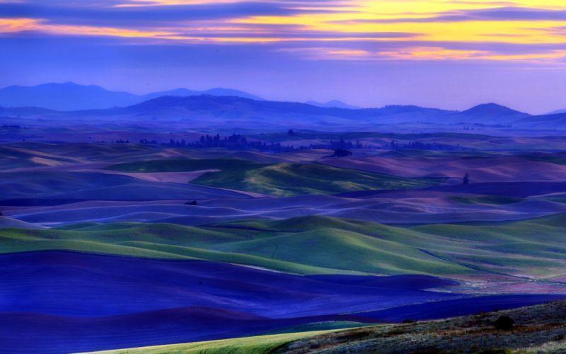 sunset field landscape wallpaper