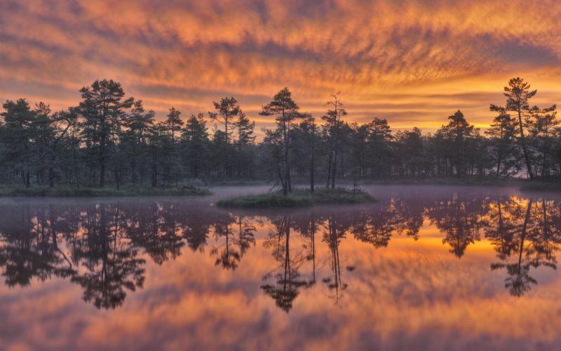 Sweden lake trees reflection sunset wallpaper