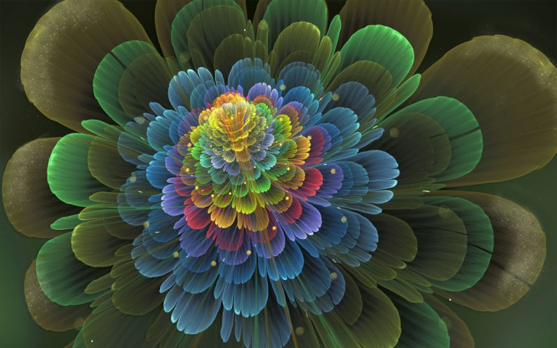 abstraction fractal 3d art flowers d wallpaper