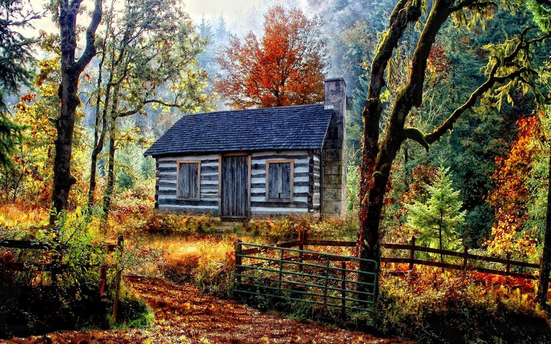 autumn forest house nature landscape wallpaper
