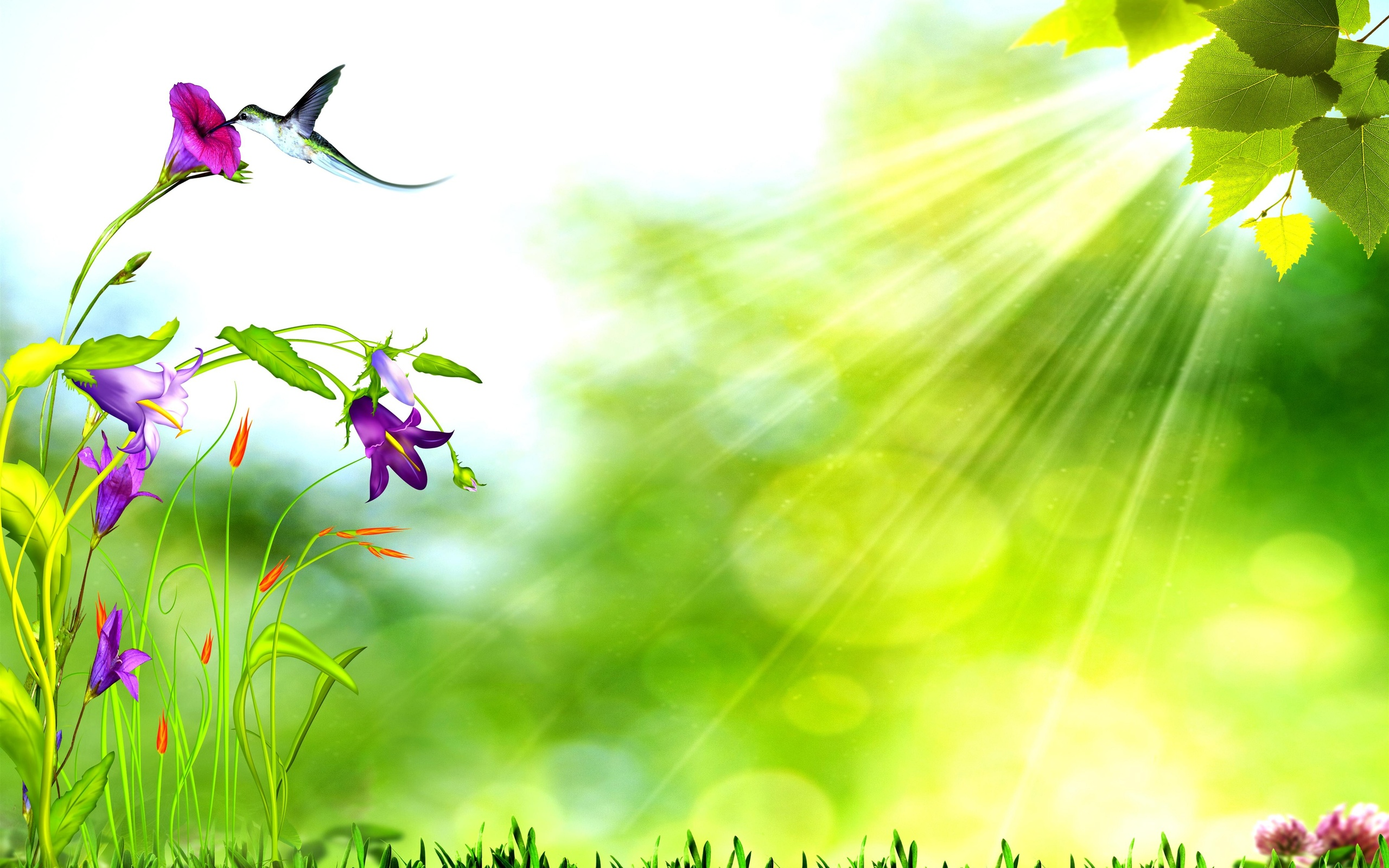 Nature Background Images Backgrounds Nature d art