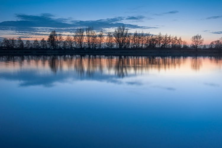 Trees row lake water quiet reflection blue sky clouds evening sunset wallpaper