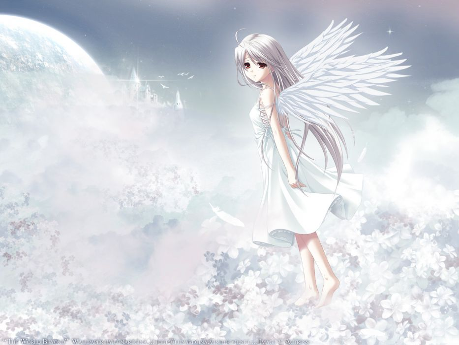 dress long hair red eyes rino white white clarity white hair wings wallpaper