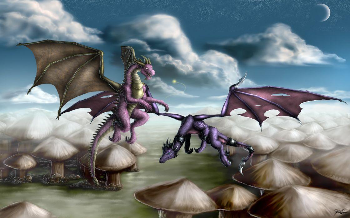 Spyro fantasy dragon dragons      t wallpaper