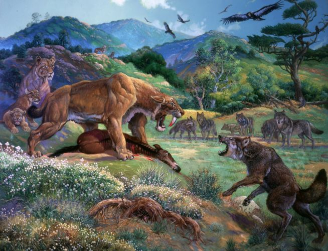 Ancient animals wallpaper