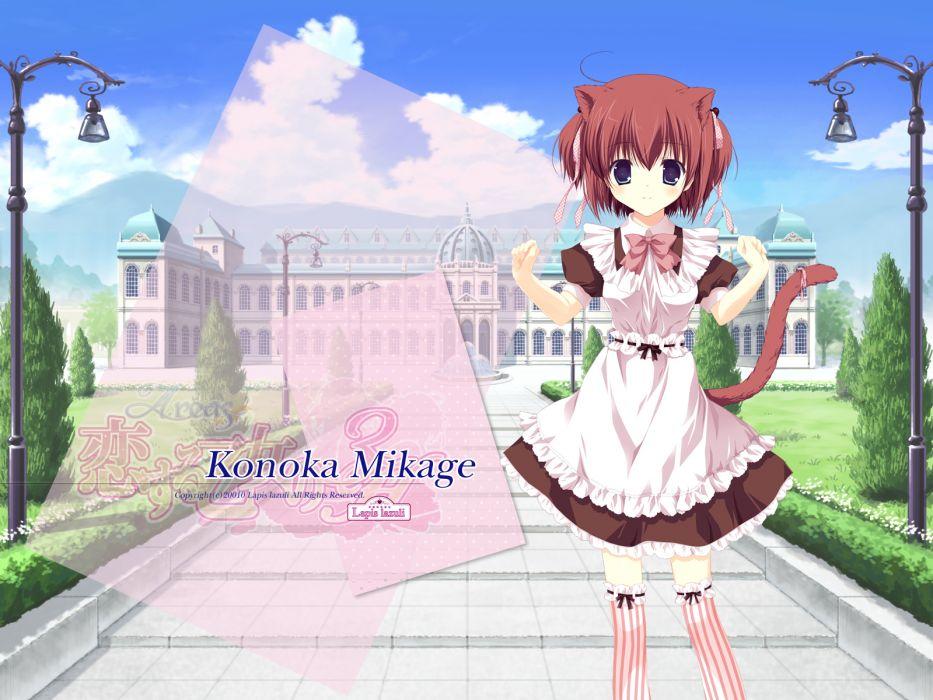 animal ears areas brown hair catgirl dress mikage konoka miyasaka miyu short hair tail wallpaper
