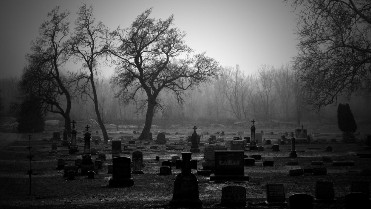 Cemetery BW Tombstones Trees wallpaper