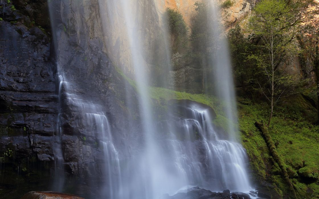 Oregon waterfall stones herbs wallpaper