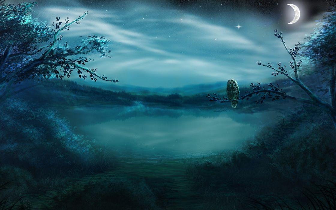 Owl Bird Night Pond wallpaper