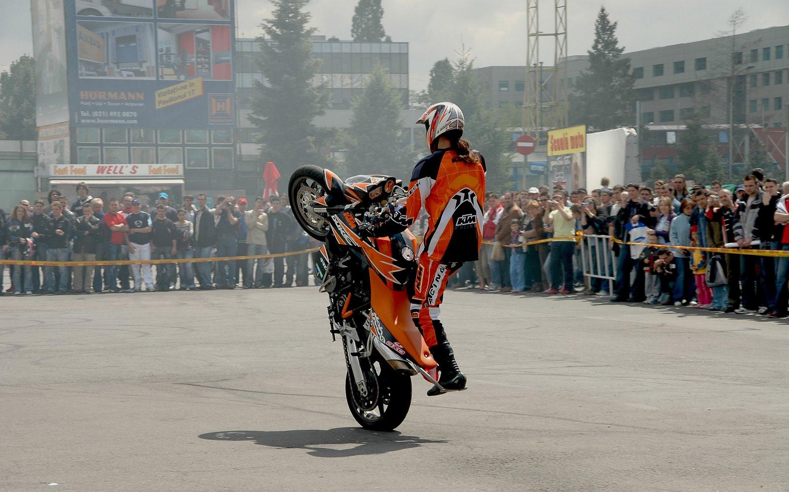 Stunt KTM Wheelie Wallpaper  1600x998 79010 WallpaperUP