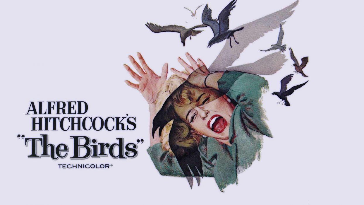 The Birds Movie Poster wallpaper