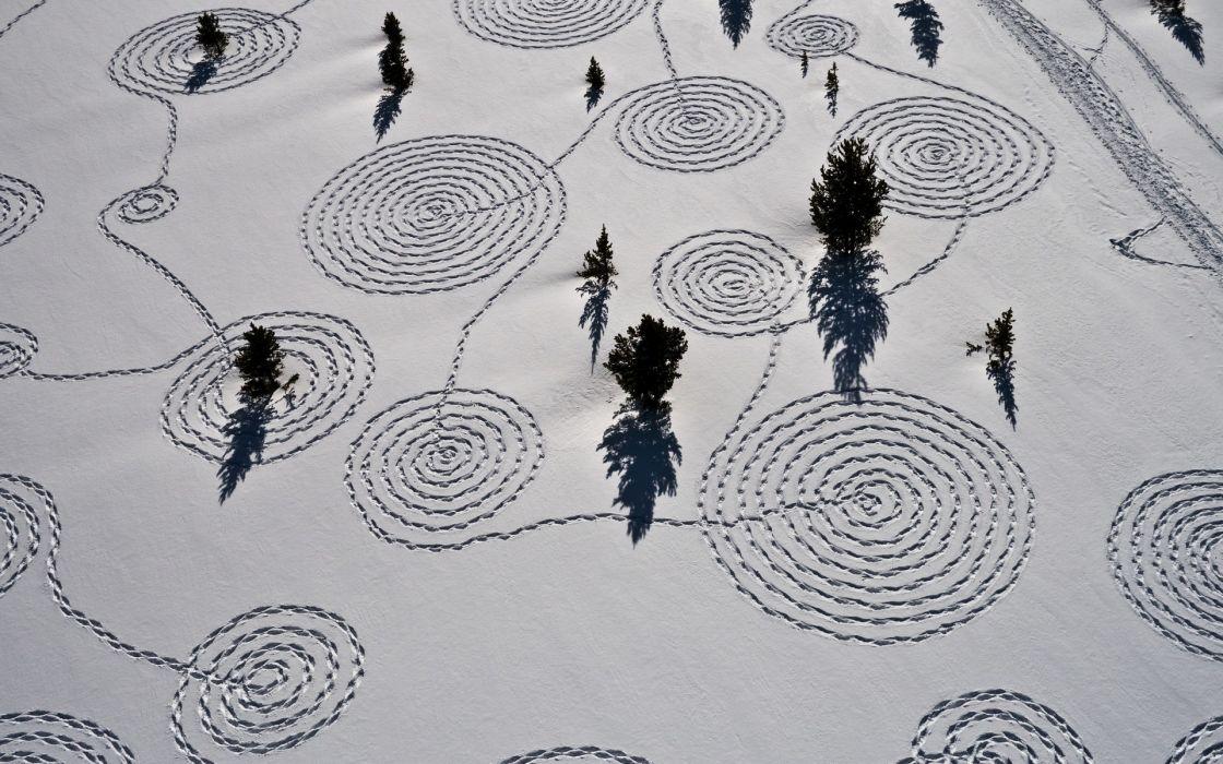 Trees Snow Winter Aerial Pattern wallpaper