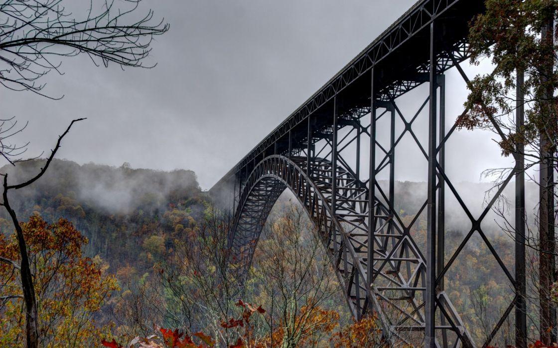 nature  autumn  bridge  trees  mist trees autumn fog wallpaper
