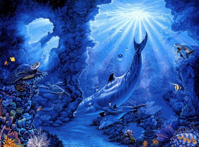 Belinda Leigh seabed turtles fish corals rays art dolphins dolphin sea ocean underwater wallpaper