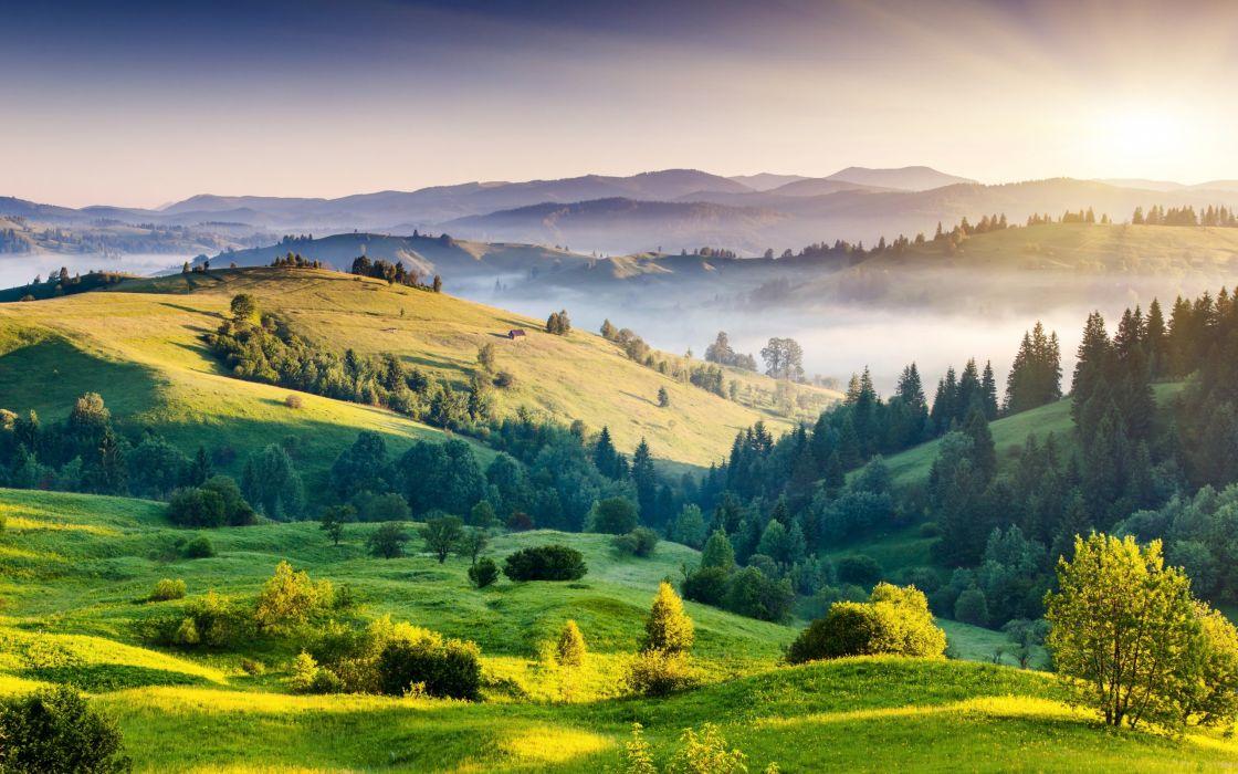 landscapes nature hills trees foliage fog sunrise sun wallpaper
