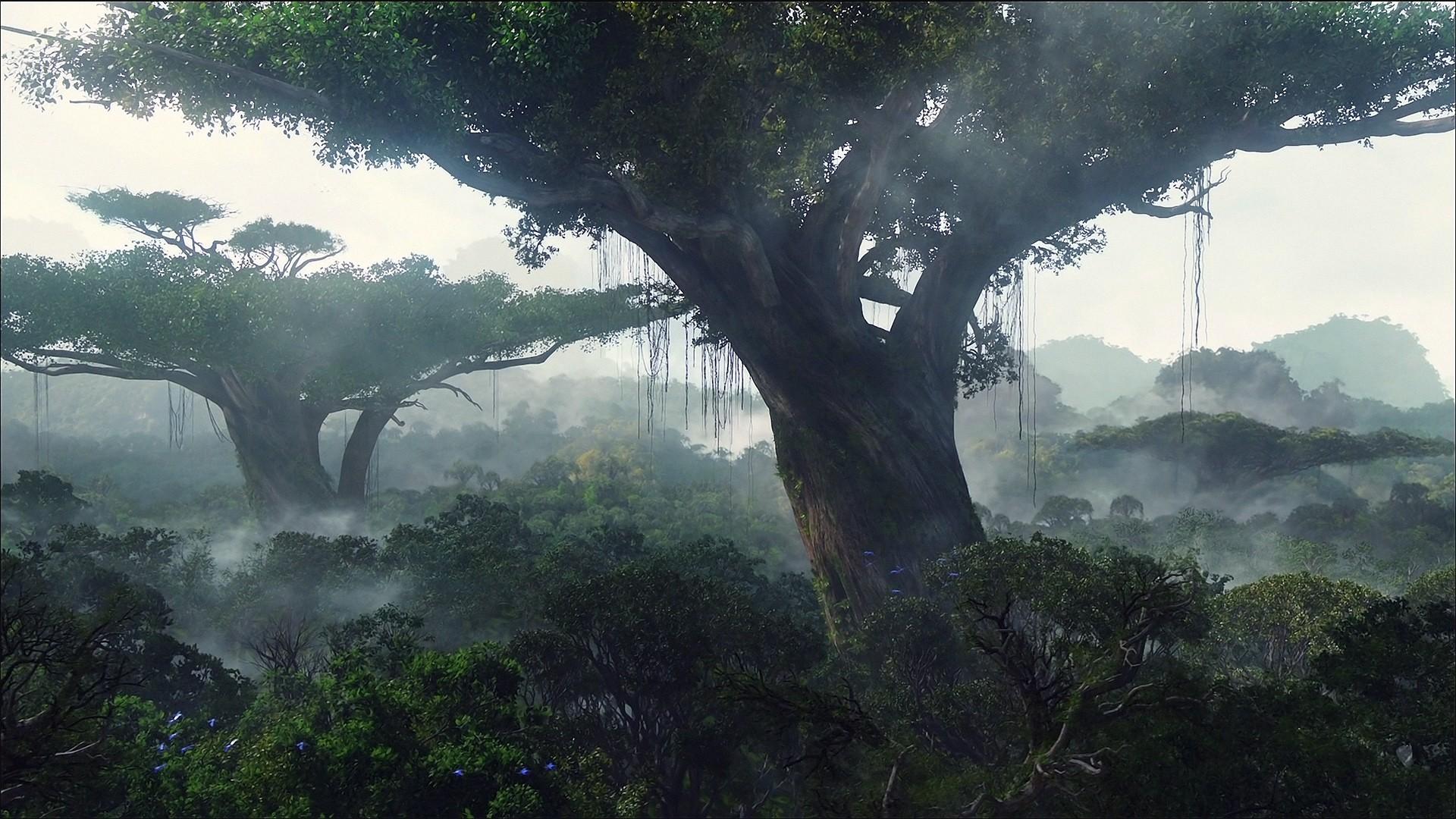 trees landscape jungle forest fog mist wallpaper 1920x1080 80328 wallpaperup. Black Bedroom Furniture Sets. Home Design Ideas