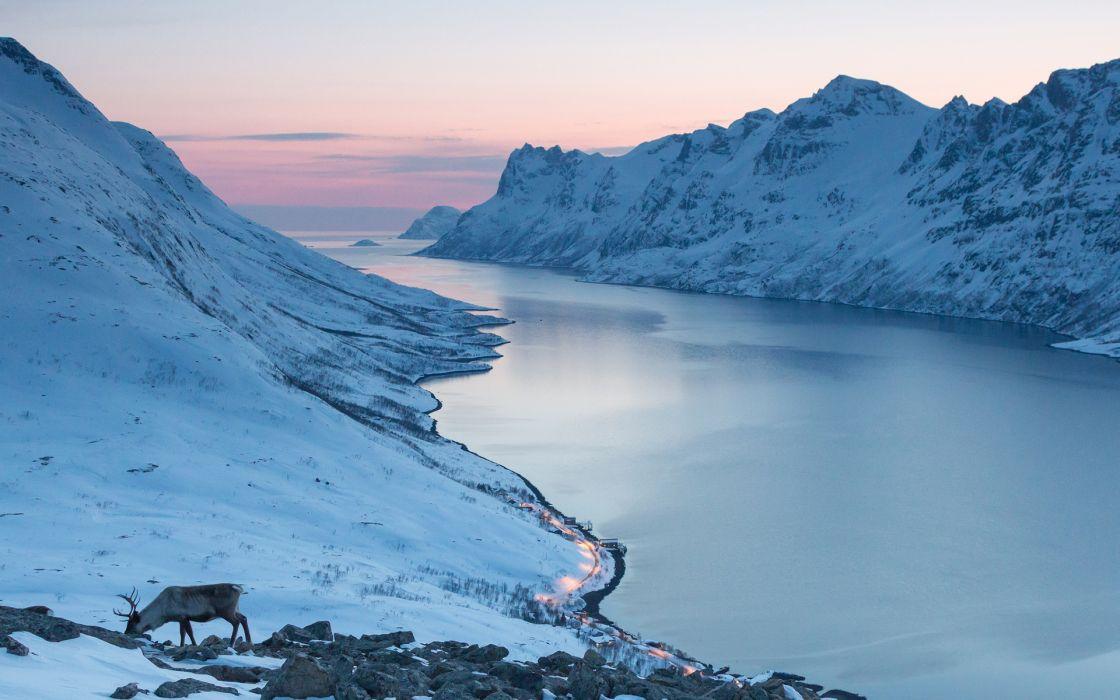 Ocean Valley Mountains Landscapes Snow winter elk deer sunrise sunset wallpaper