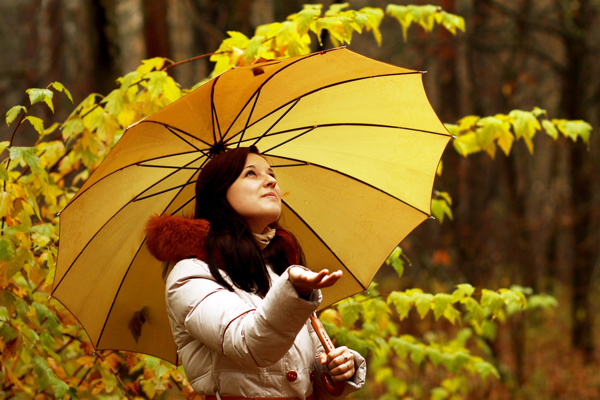С зонтиком в лесу  № 3394103 бесплатно
