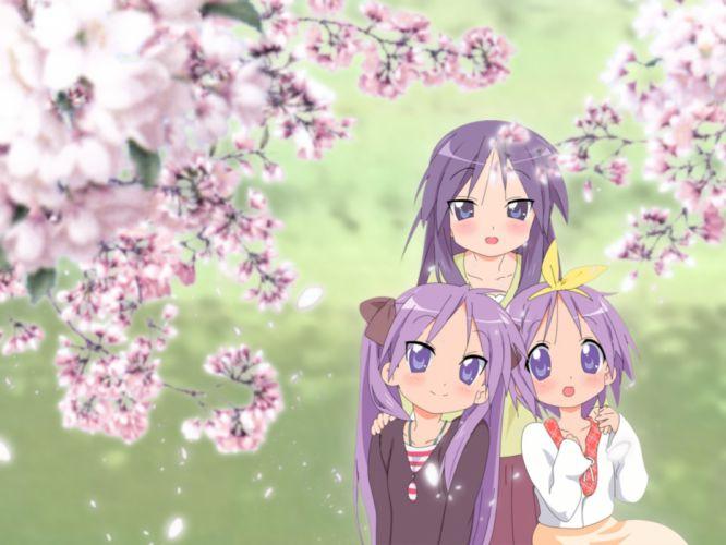 cherry blossoms hiiragi kagami hiiragi miki hiiragi tsukasa lucky star wallpaper