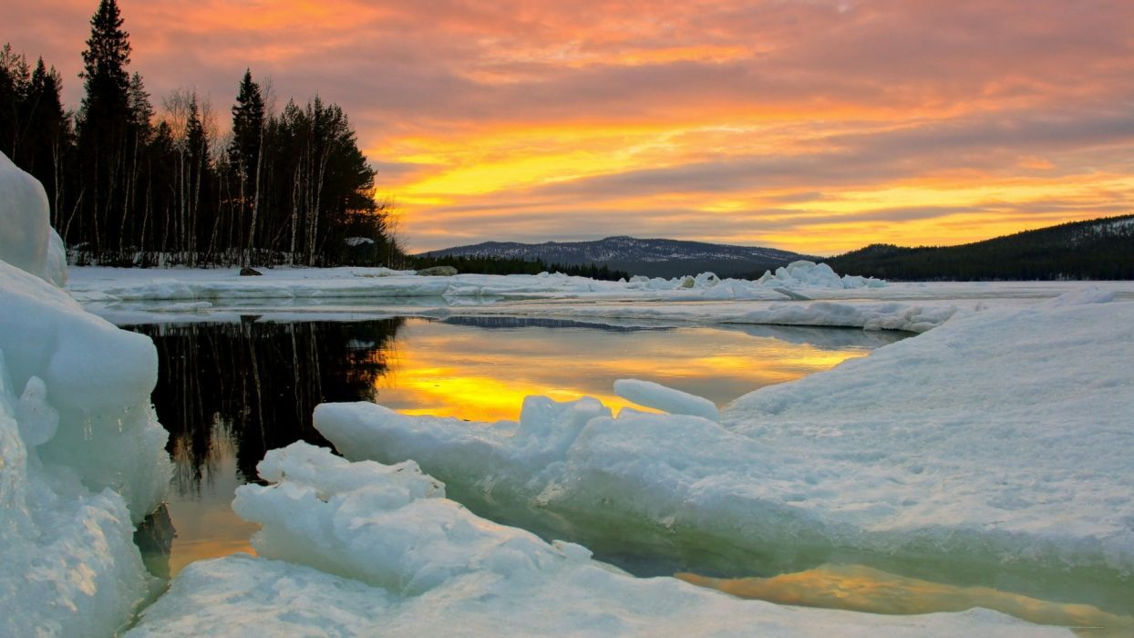 ice nature winter trees lakes wallpaper