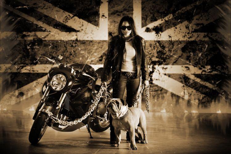 2012 Vliner Triumph Speed Tripple Bulldog sportbike sportbikes tuning bike s wallpaper