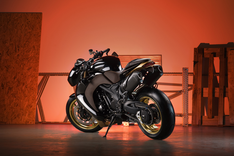2012 Vliner Triumph Speed Tripple Bulldog Sportbike