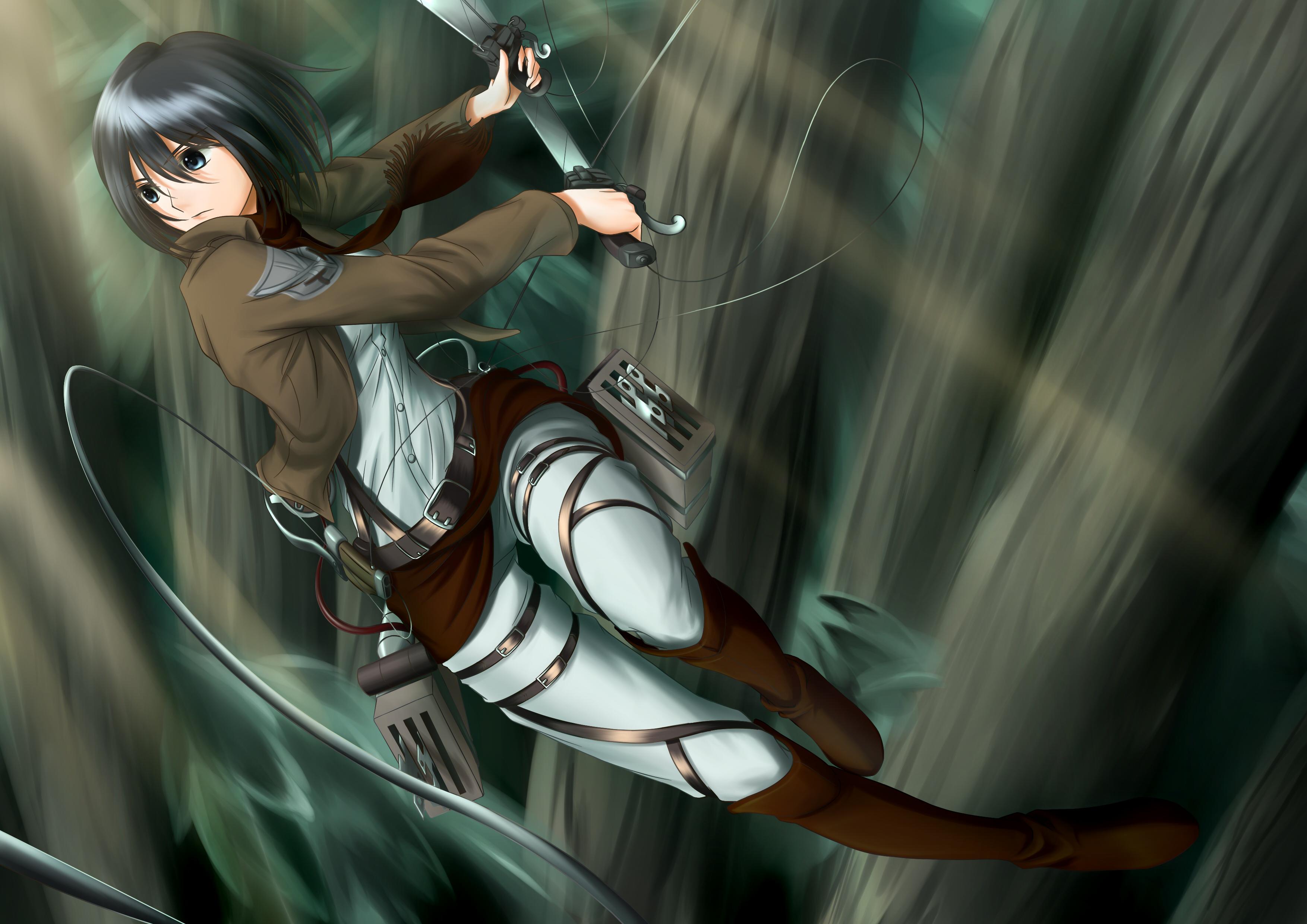 Shingeki No Kyojin Mikasa Ackerman Q Wallpaper 3507x2480 82445 Wallpaperup