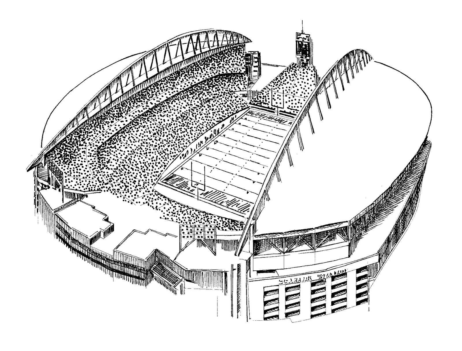 panther stadium coloring pages - photo#37