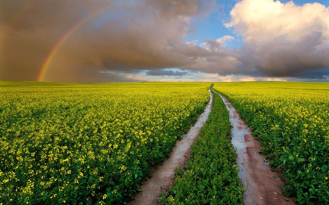 landscape flowers rainbow rainbows sky clouds wallpaper