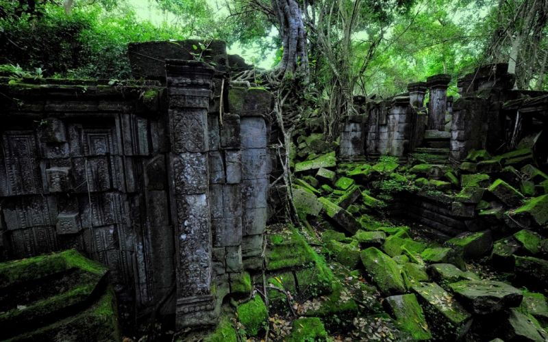 ruins decay jungle trees forest nature t wallpaper