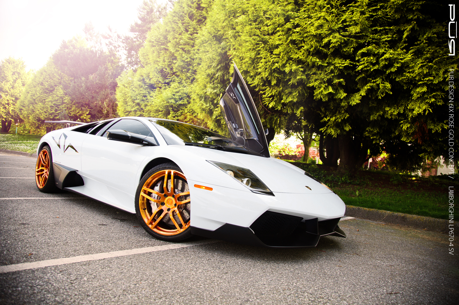 Lamborghini Murcielago 2013