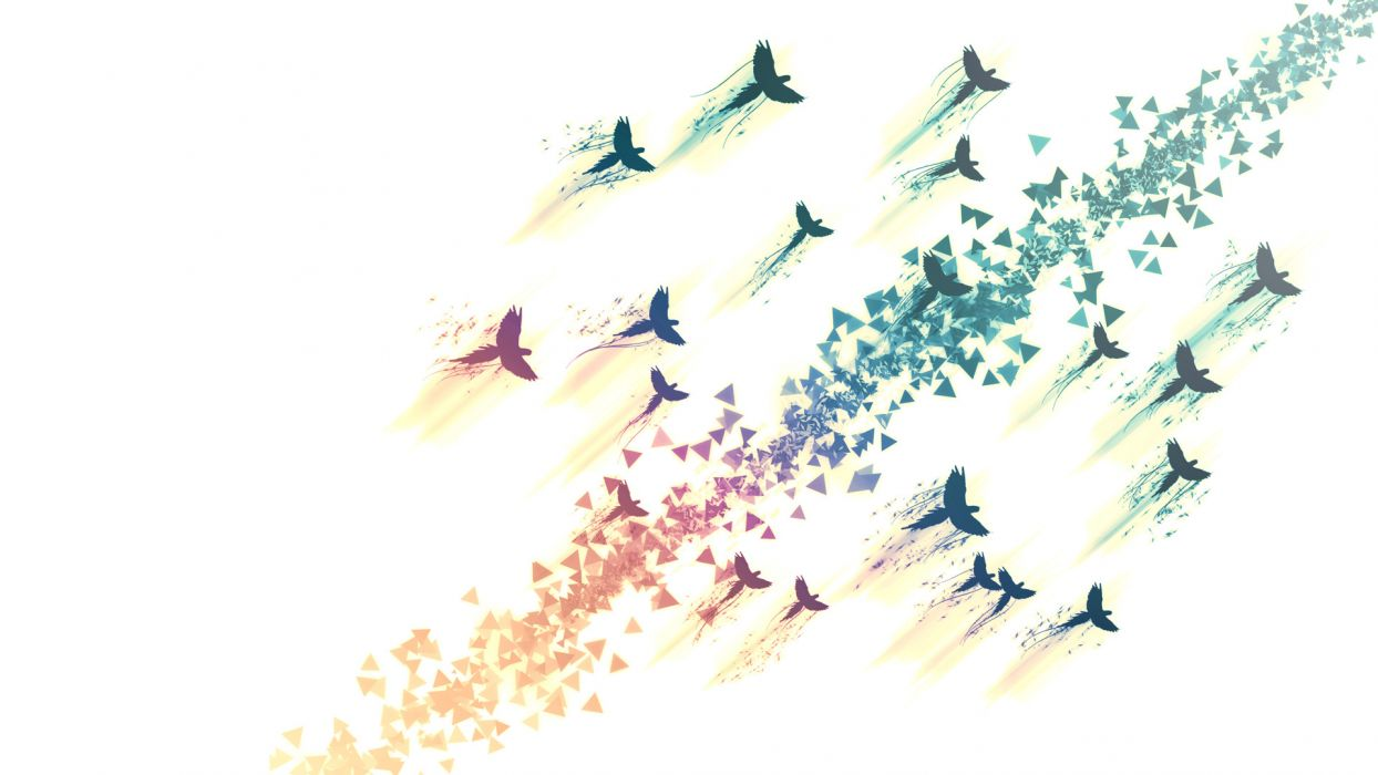 Birds Abstract White psychedelic art rainbow wallpaper