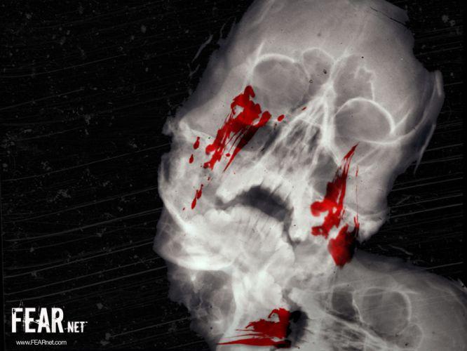 Xray Bleeding Skull horror movies x-ray blood dark wallpaper