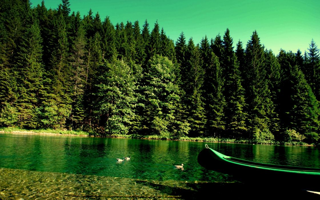 forest_river_boat_nature wallpaper