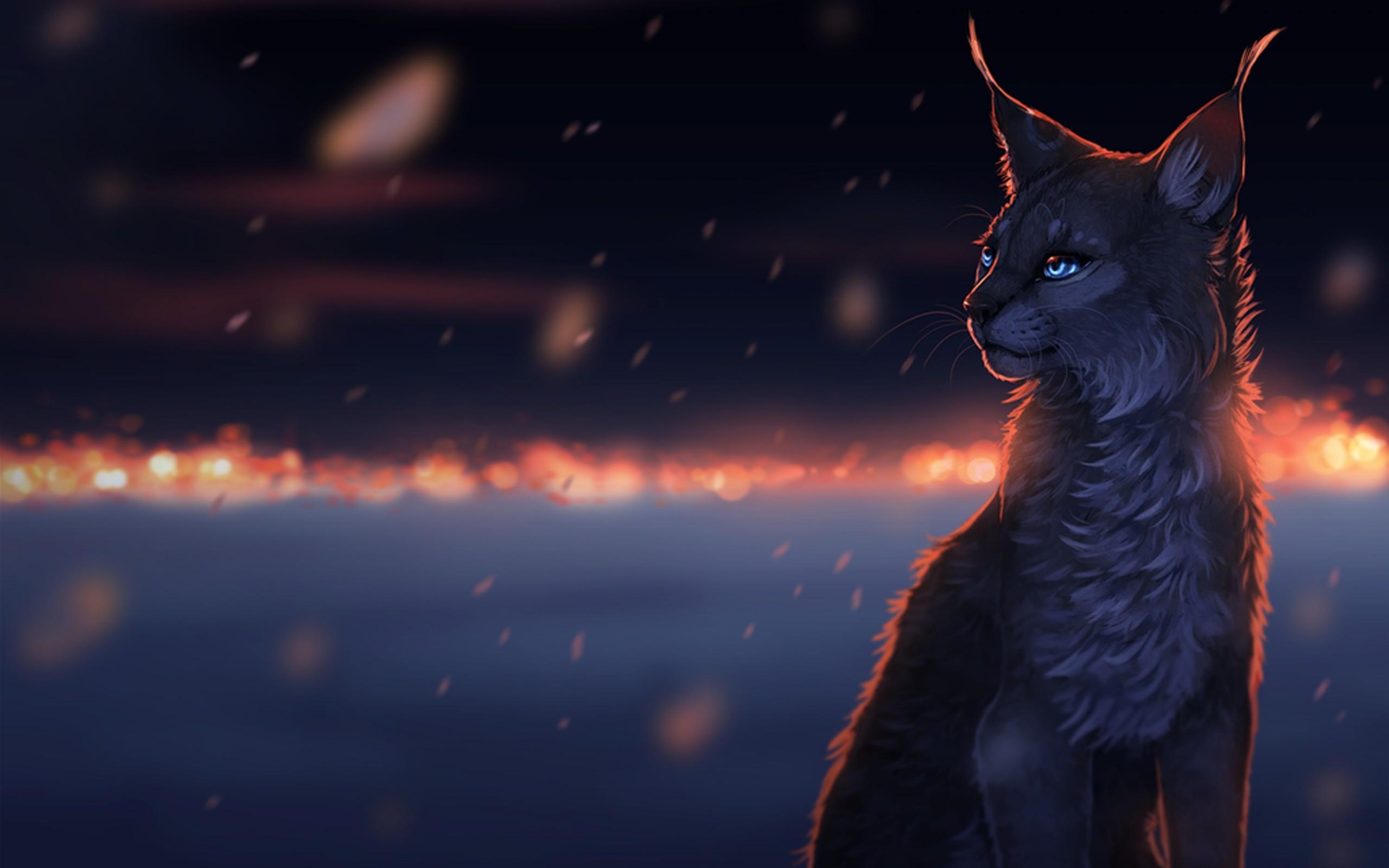 Art cat dreams snow sorrow drops cats fantasy eyes bokeh ...