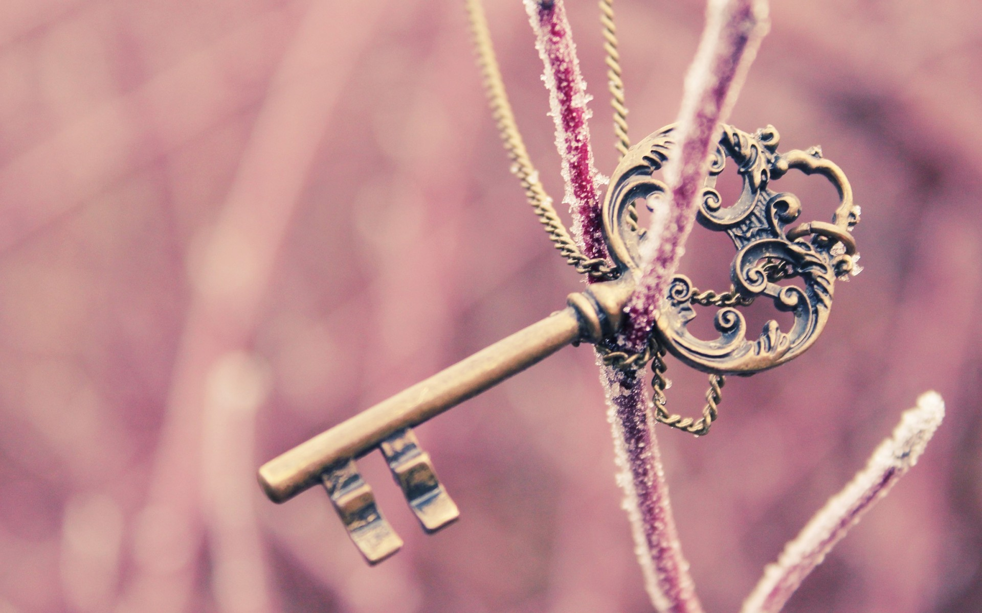 Love Key Hd Wallpaper : Mood key pink bokeh frost chain chains macro wallpaper 1920x1200 84818 WallpaperUP