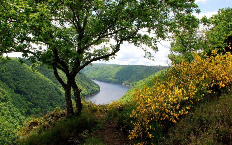 river hills greenery trees flowers lamdscapes landscape wallpaper