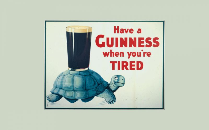 Guinness Turtle Tortoise Beer Alcohol texts wallpaper