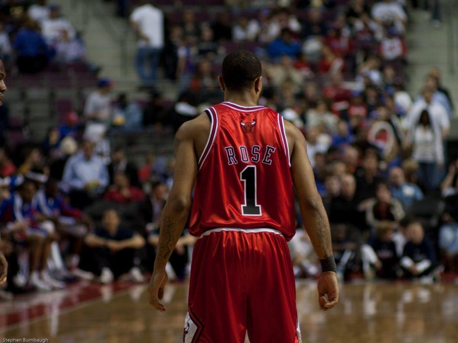 sports nba basketball backview derrick rose depth of field chicago bulls wallpaper
