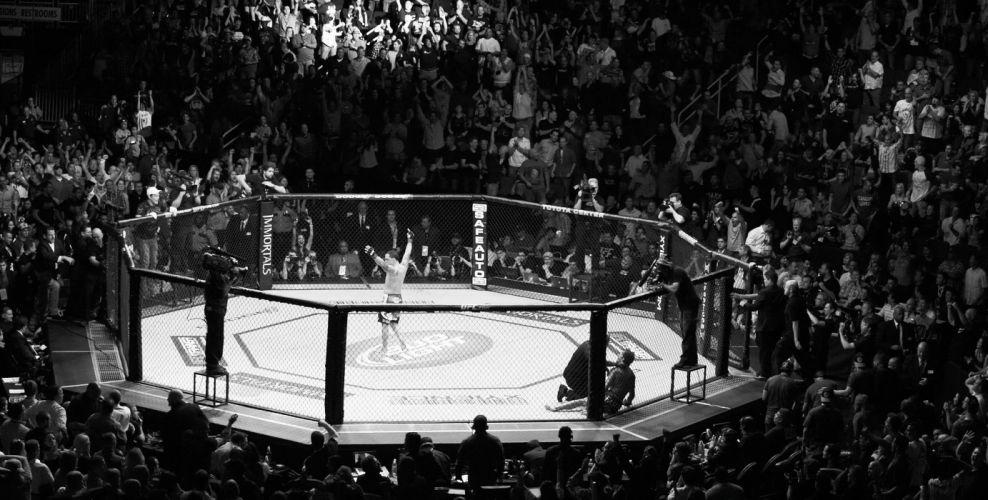 UFC mixed martial arts mma fight extreme battle battles stadium crowd crowds b-w black wallpaper