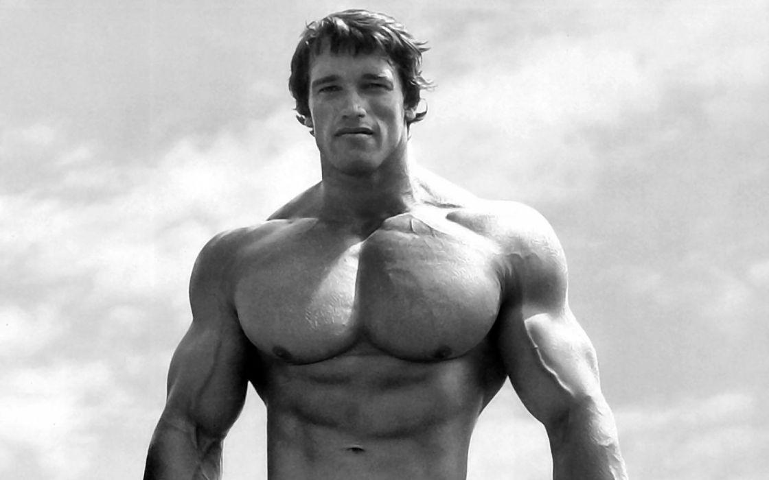 arnold schwarzenegger fitness muscle bodybiulding body men b-w wallpaper