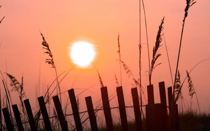 sunset Sun grain wallpaper