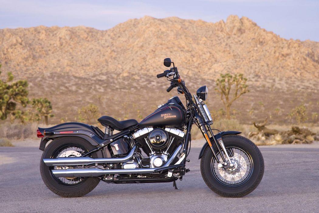 2008 Harley Davidson FLSTSB Softail Cross Bones wallpaper