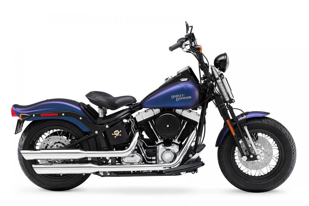 2010 Harley Davidson Cross Bones FLSTSB wallpaper