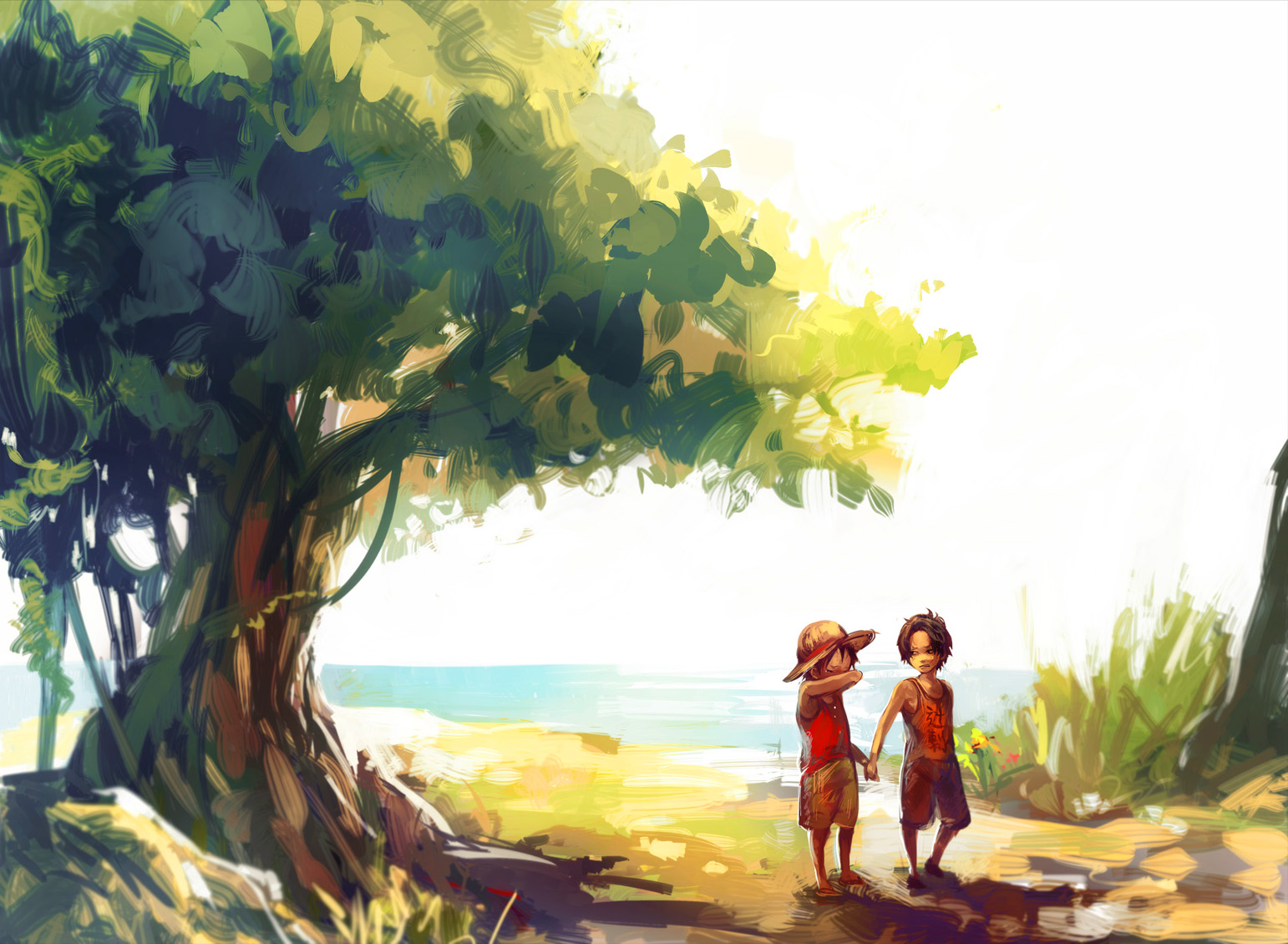 brothers luffy and ace wallpaper - photo #34