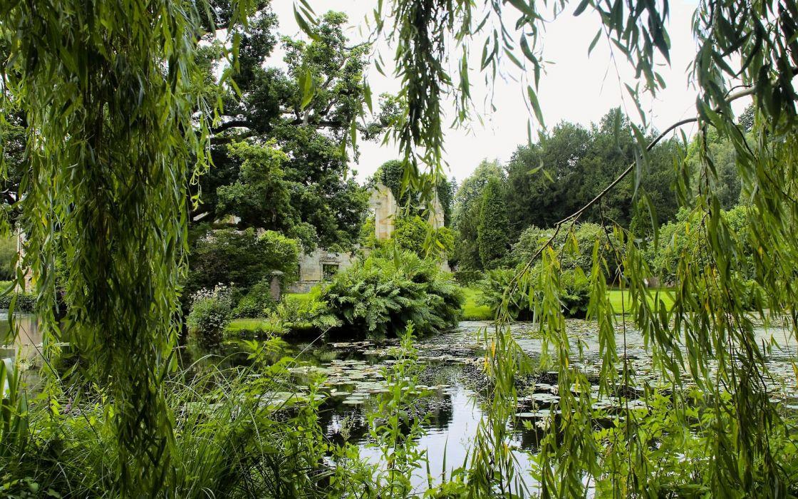 park pond trees branches landscape lakes lake wallpaper