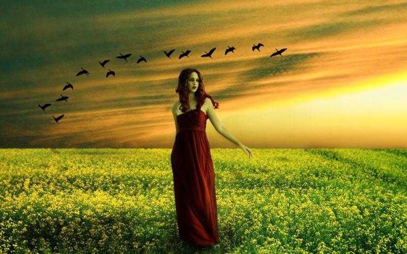 sunset field girl birds flower flowers mood gothic wallpaper