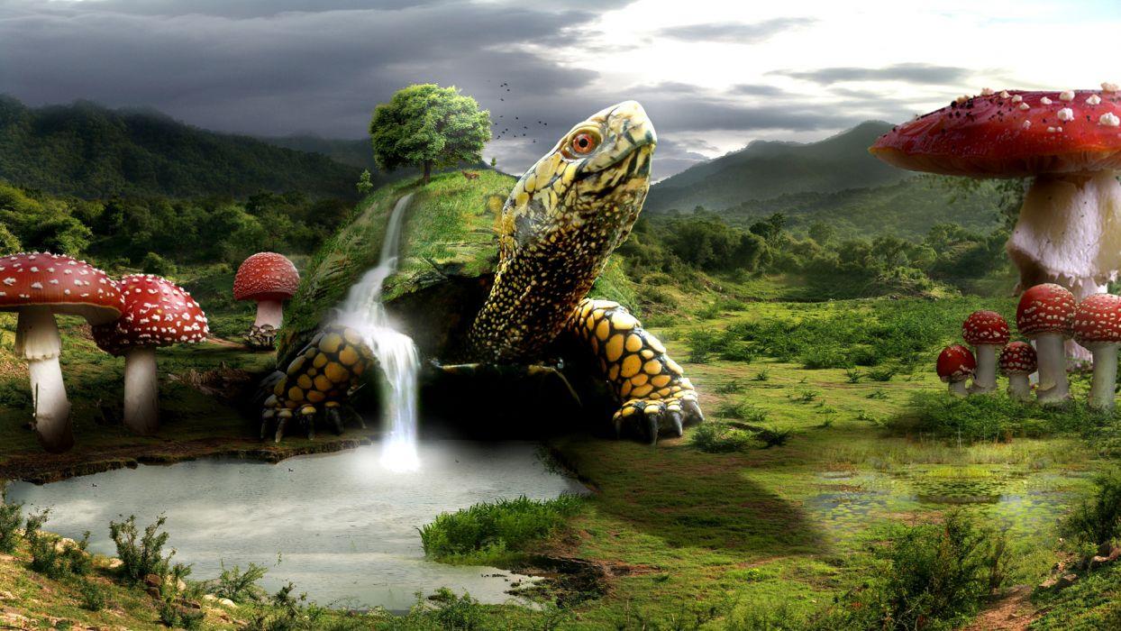 turtle turtles landscape mushroom waterfalls waterfall wallpaper