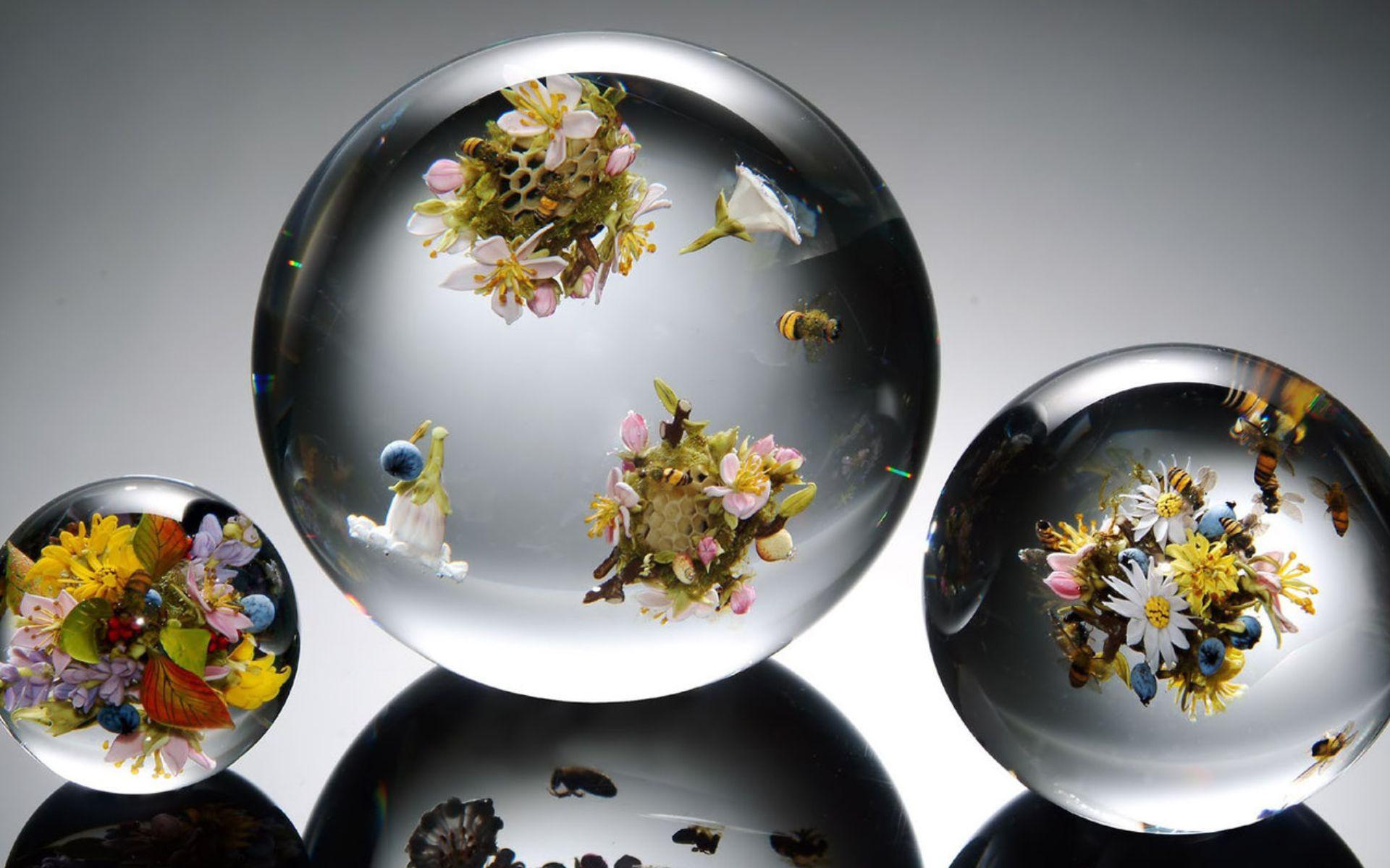 Transparent Balloons Flowers Bees Flower Glass Sphere Mood Wallpaper