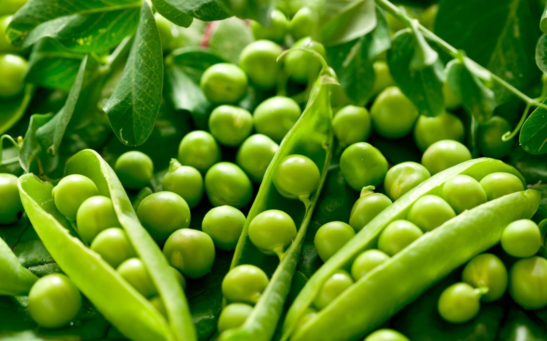 green vegetables peas wallpaper